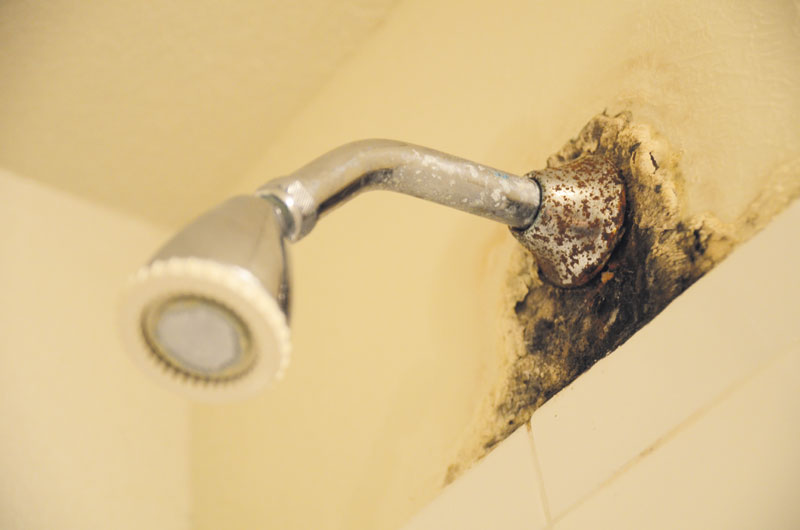 Mold In Shower Head students taking responsibility for cleanliness of residence halls