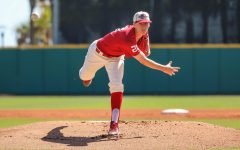 Nicholls baseball dropped weekend series at home