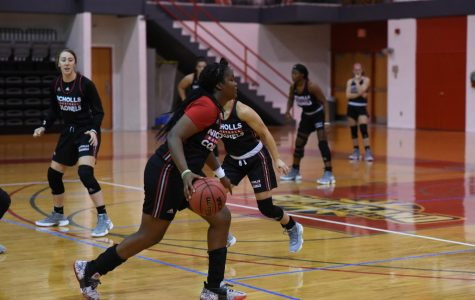 Women's Basketball prepares for new season after historic win