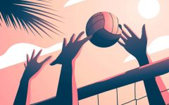 Volleyball names new head coach, adds beach volleyball team