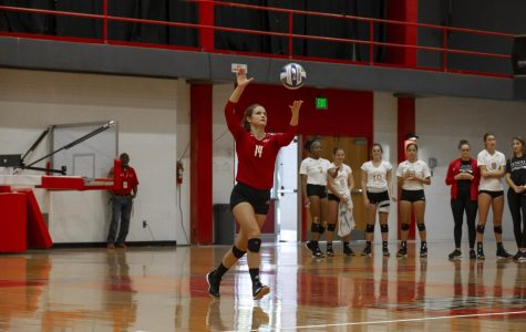 Volleyball Spotlight: Emily Venable