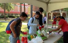 Nicholls counseling center hosts Free Your Mind Fridays