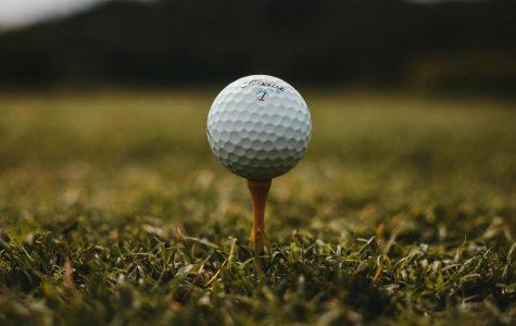 The diversity of the men's golf team