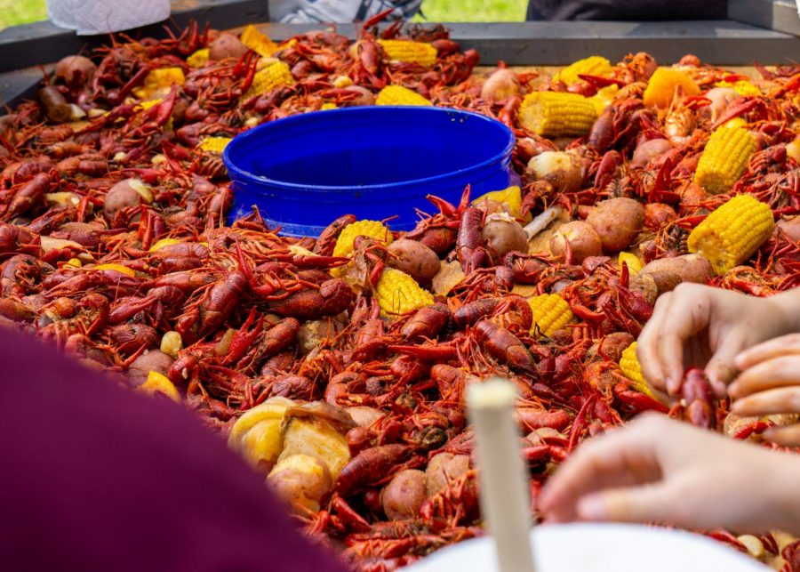 Opinion: My First Time Trying Crawfish